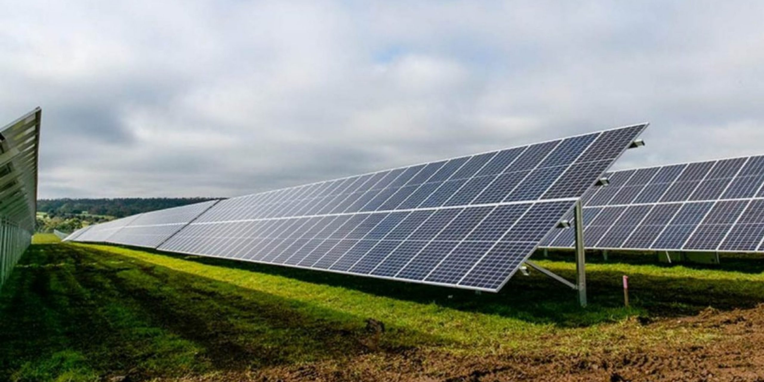 IFM and Trafigura Investors Create Nala Renewables